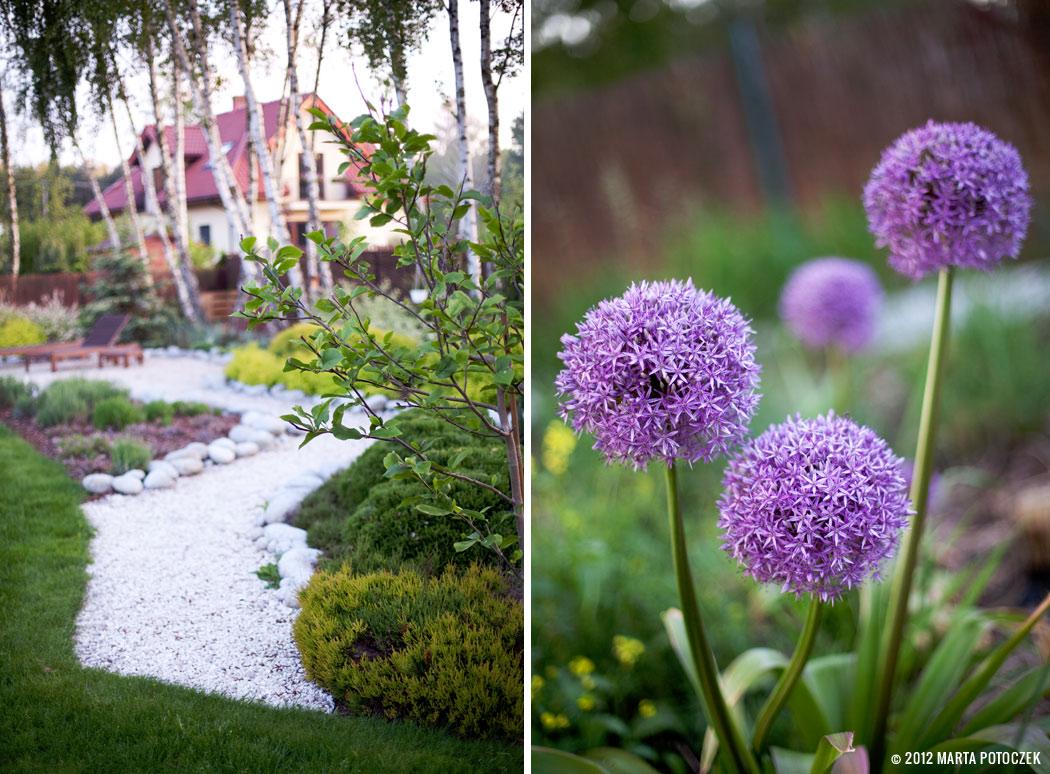 2_garden_intro