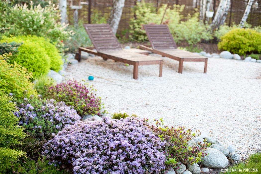 6_garden_azaleas