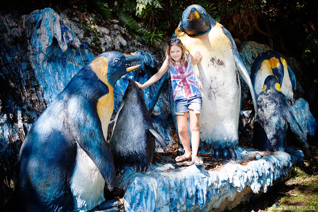 12-chiang_mai_zoo