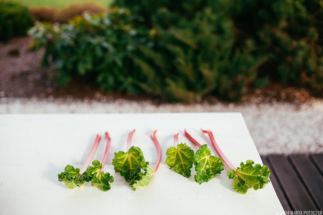 rhubarb_stalks