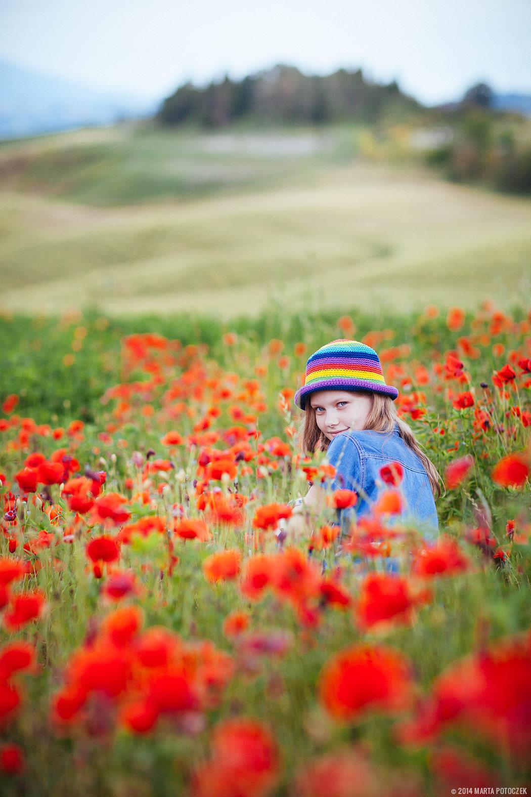 poppy_field_tuscany_seggiano