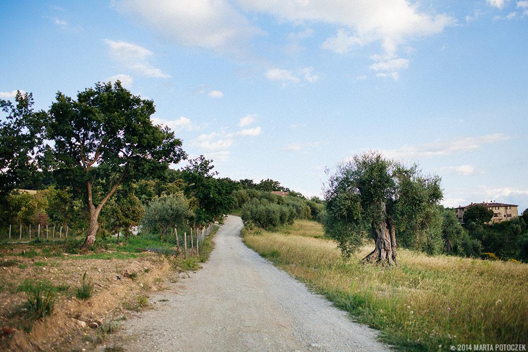 wander_tuscany