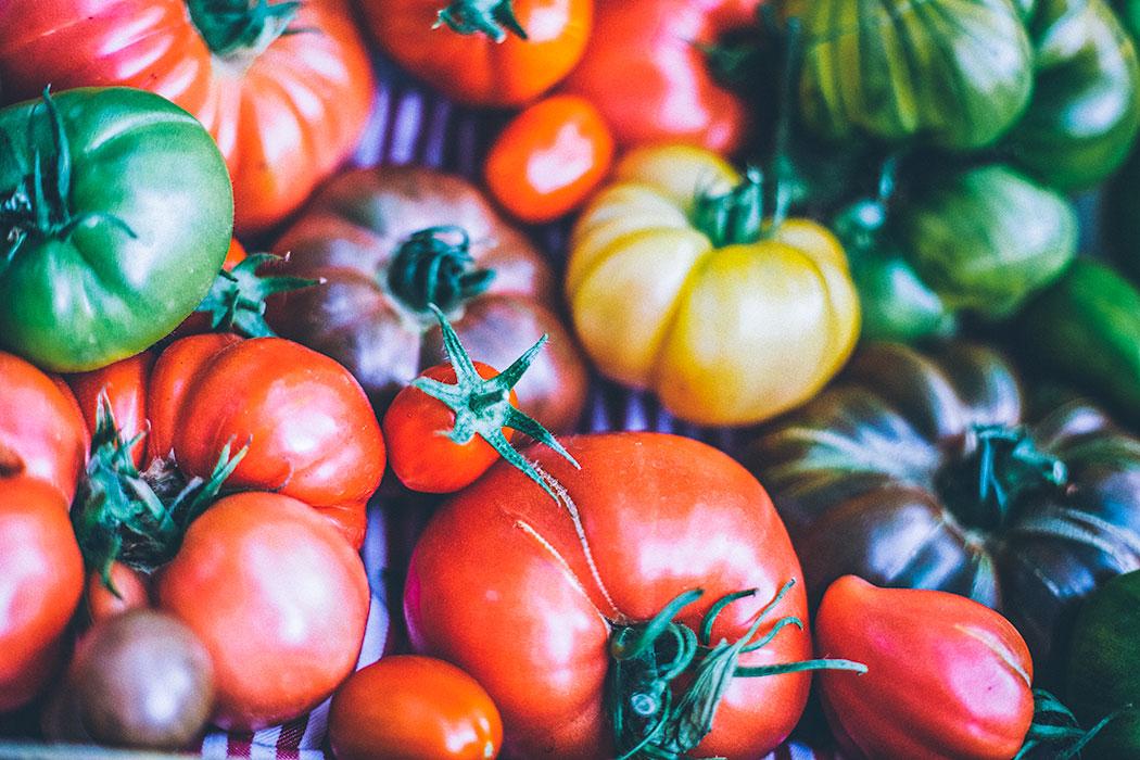 ciekawe_odmiany_pomidorów