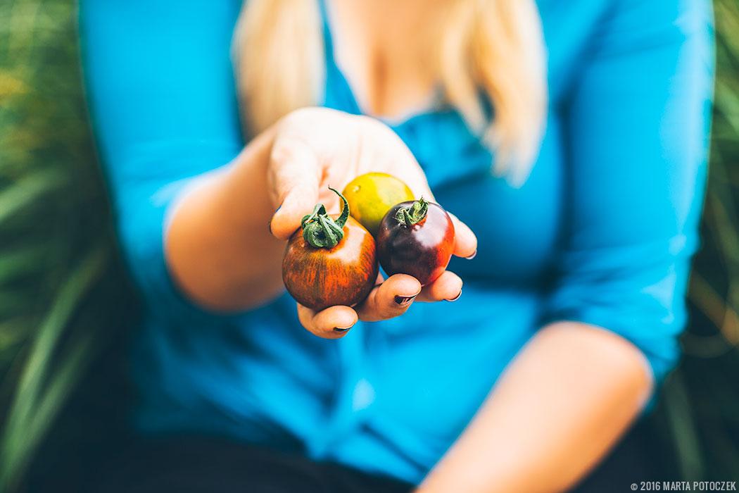 ciekawe_odmiany_pomidorow