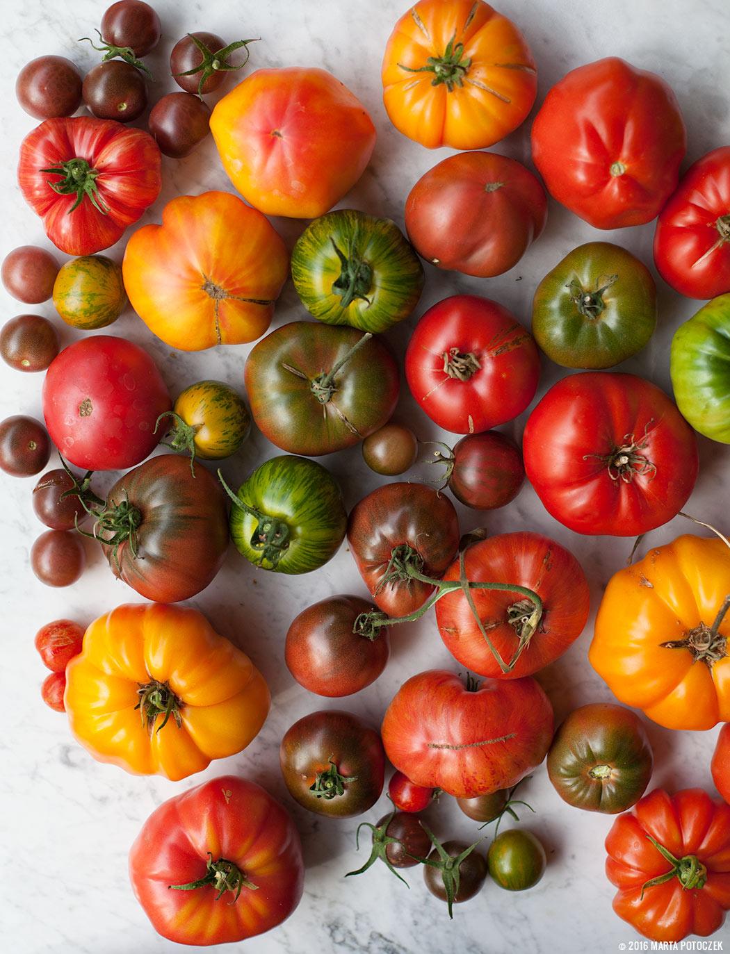 pomidory różne odmiany