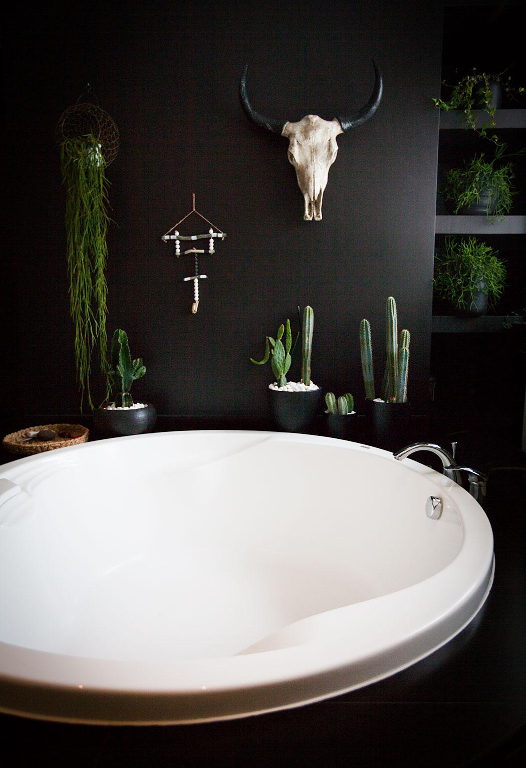 kaktusy w łazience