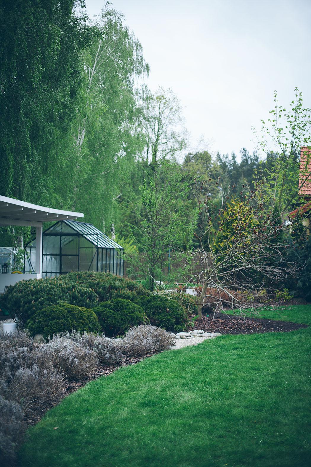 widok na szkalrnie, ogrod w kwietniu