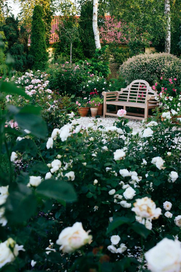 lawka angielska w ogrodzie