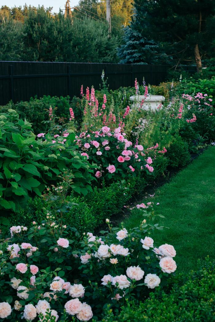 spacer po ogrodzie