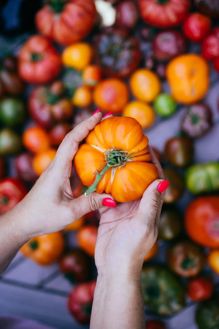 pomidory uprawa-5