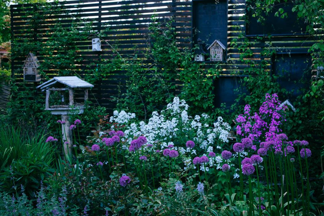 ogrod ogrody rok w ogrodzie-15