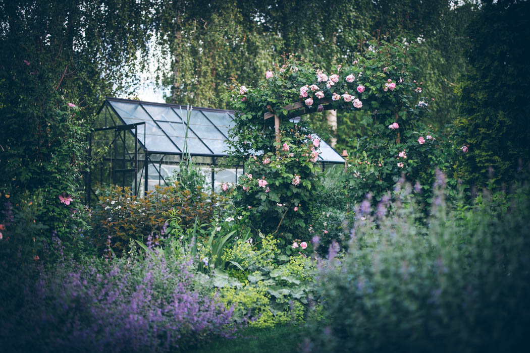 ogrod ogrody rok w ogrodzie-27