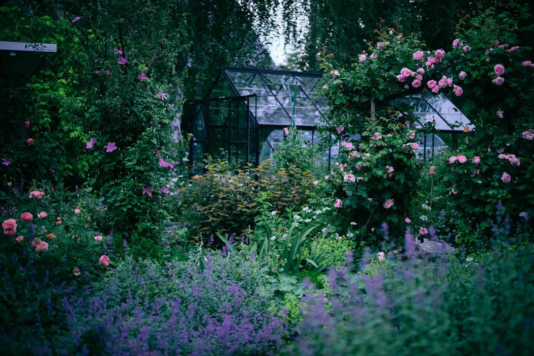 ogrod ogrody rok w ogrodzie-32