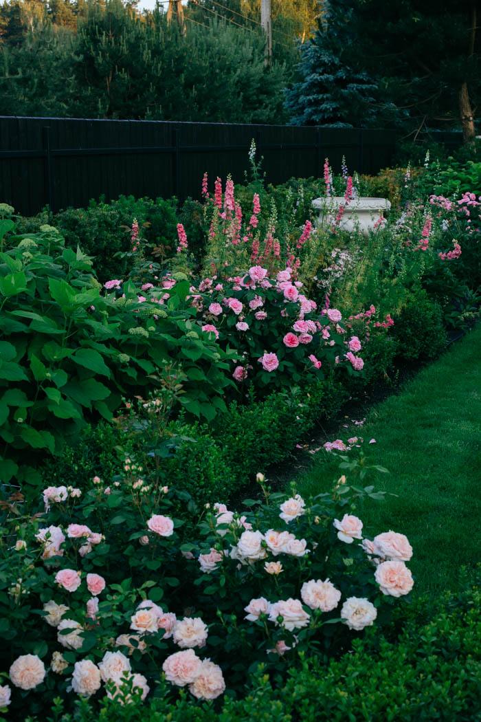 ogrod ogrody rok w ogrodzie-37
