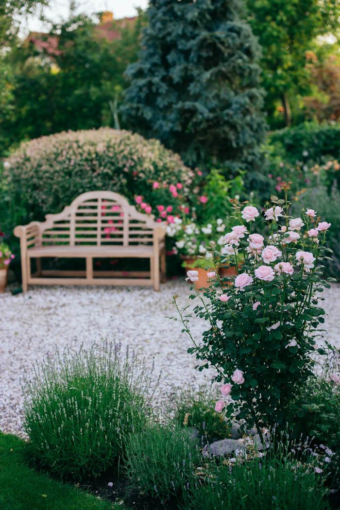 ogrod ogrody rok w ogrodzie-40