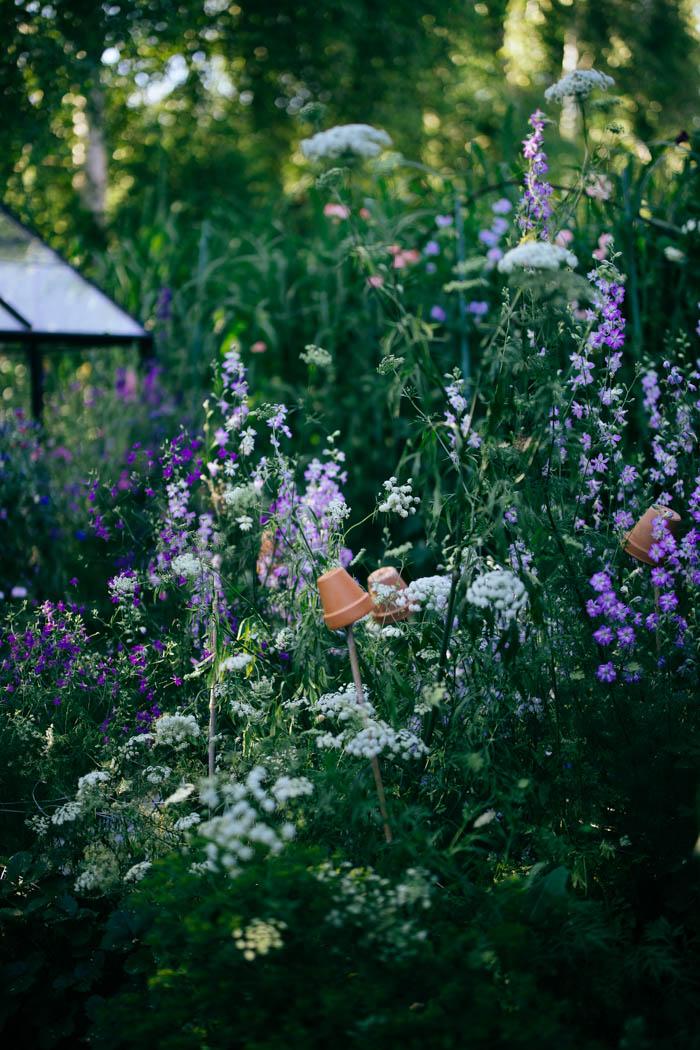 ogrod ogrody rok w ogrodzie-45