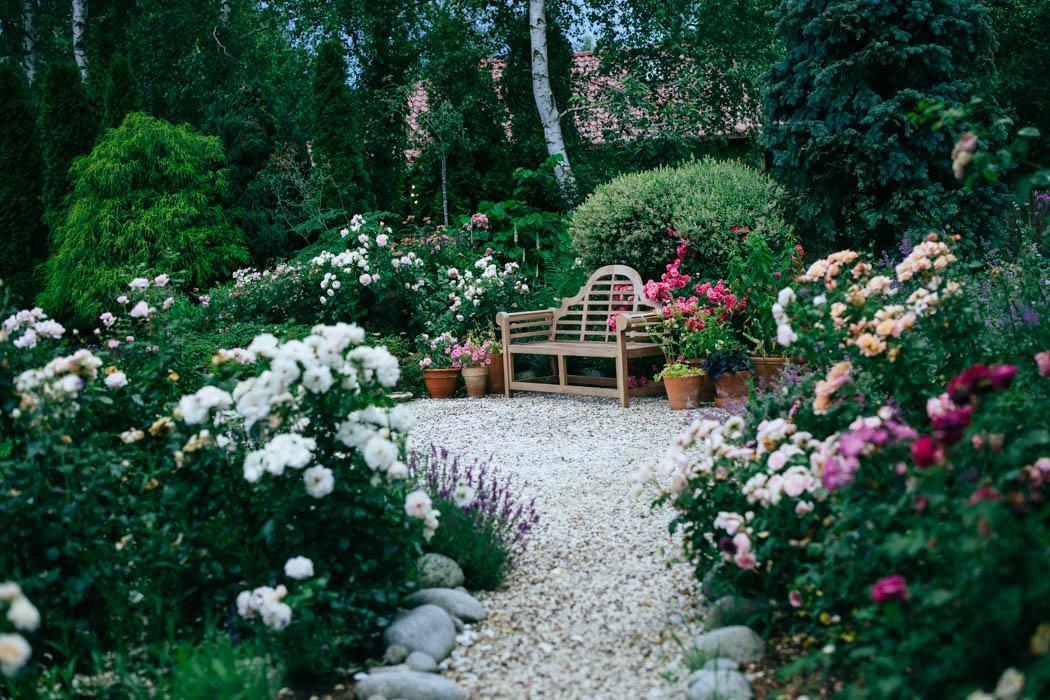 ogrod ogrody rok w ogrodzie-54