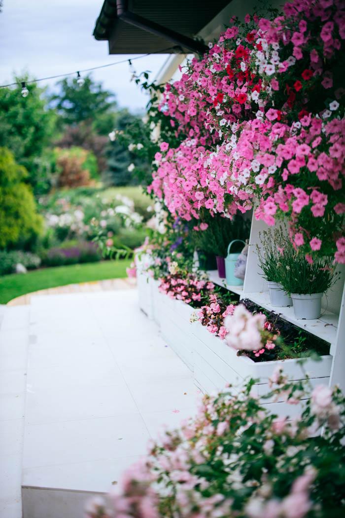 ogrod ogrody rok w ogrodzie-56