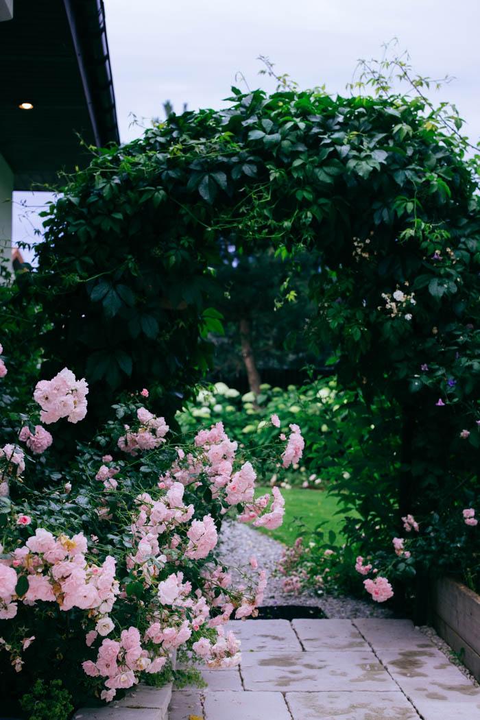 ogrod ogrody rok w ogrodzie-57
