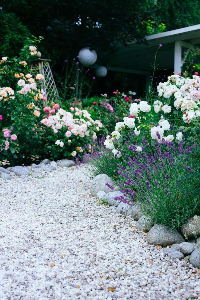 ogrod ogrody rok w ogrodzie-63