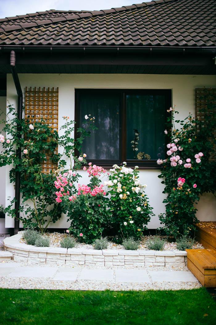 ogrod ogrody rok w ogrodzie-65