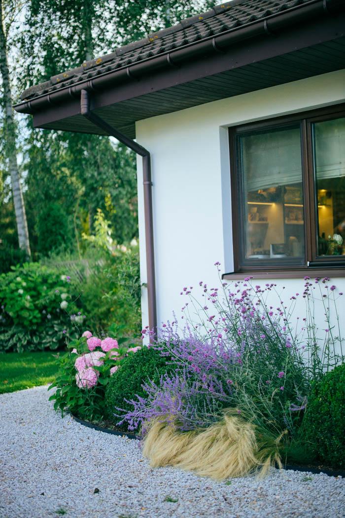 ogrod ogrody rok w ogrodzie-72